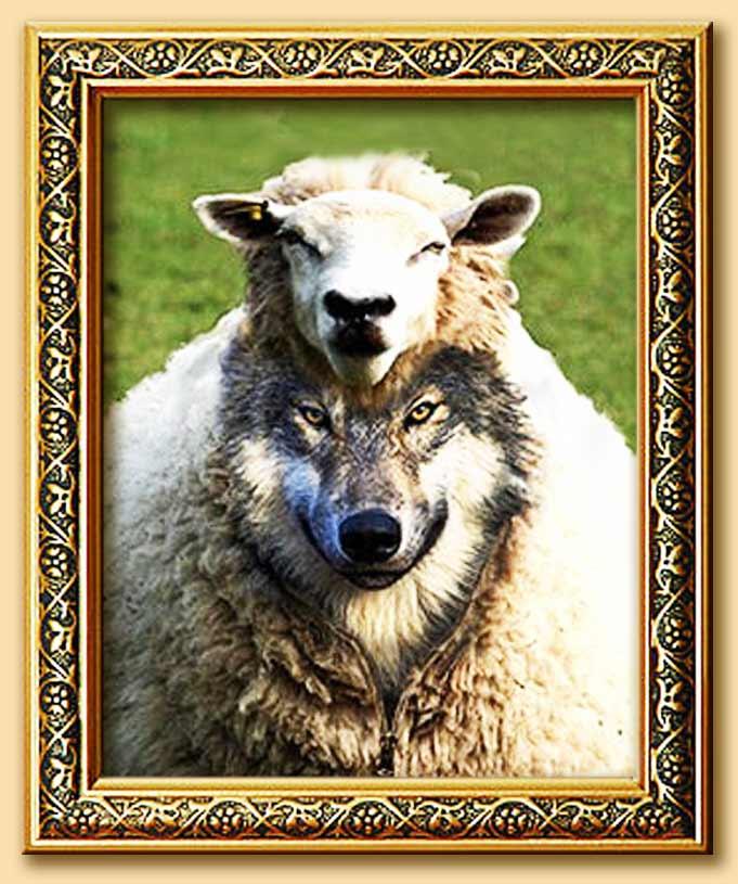 lupo travestito da pecora