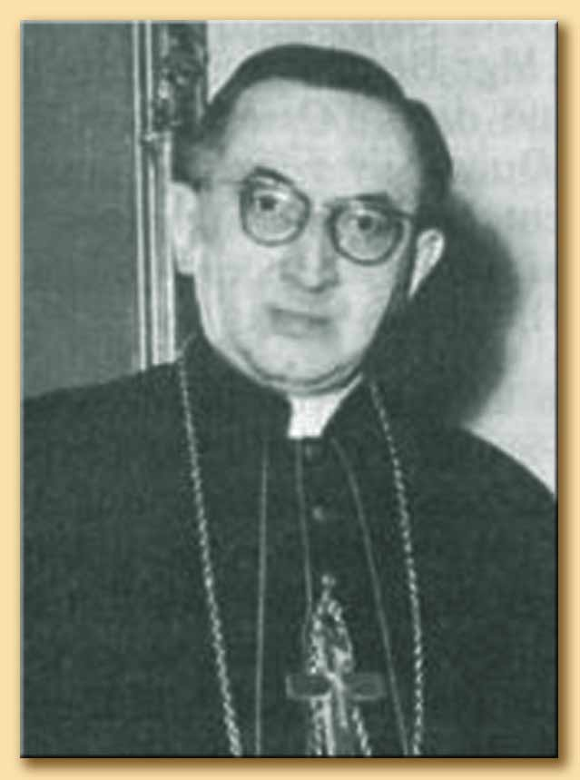 cardinale jean villot